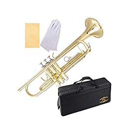 20 Best Beginner Trumpet Reviews 2019 – Best Trumpet Brands