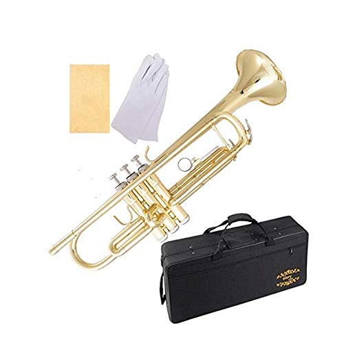 Glory Brass Bb Trumpet with Pro Case +Care Kit, Gold, No NEED TUNING,Play directlly. More COLORS Available ! CLICK on LISTING to SEE All Colors