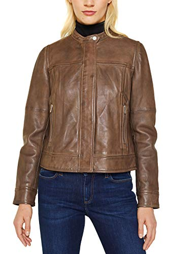 ESPRIT Aus Leder: Biker-Jacke mit Stehbund