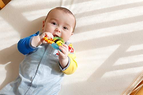 Sassy歯固めラトル3ヶ月から対象ひんやり色々な感触バンブル・バイツ・ファンTYSA80679