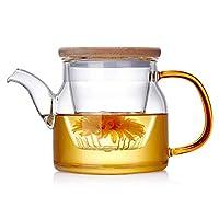 注入器付きガラス茶、耐熱ガラス大型透明茶、ハンドルと蓋付きの小さなカップ、ステンレス鋼フィルターストーブトップセーフ450ml / 15.8oz
