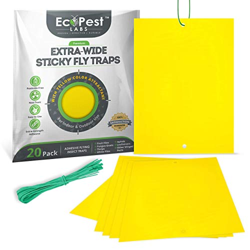 ECOPEST Sticky Fruit Fly and Gnat Traps – 20 Pack (Extra-Wide) |...