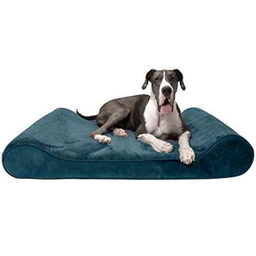 Furhaven Pet Dog Bed - Orthopedic Minky Plush and Velvet Ergonomic Luxe Lounger Cradle Mattress Contour Pet Bed with Removable Cover for Dogs and Cats, Spruce Blue, Giant