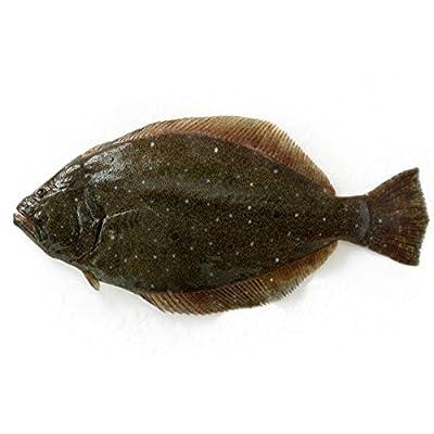 築地魚群 天然 ヒラメ1尾 国産 1-1.5kg前後サイズ