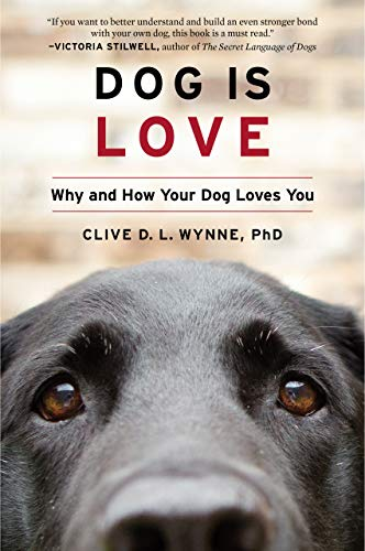 Top 10 best selling list for dna your dog tested