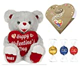 Gray Teddy Bear with Chocolates - Way to Celebrate Large Sweetheart Plush Bear with Lindt Lindor Irresistibly Smooth Assorted Chocolate Truffles, Special Set of Gift for Women on Valentine's Day