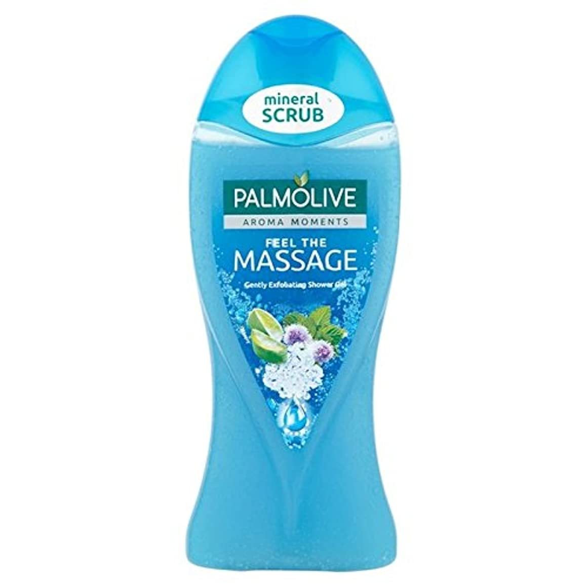 コーンウォール伝統くるくるPalmolive Shower Gel Massage 250ml (Pack of 6) - パルモシャワージェルマッサージ250ミリリットル x6 [並行輸入品]