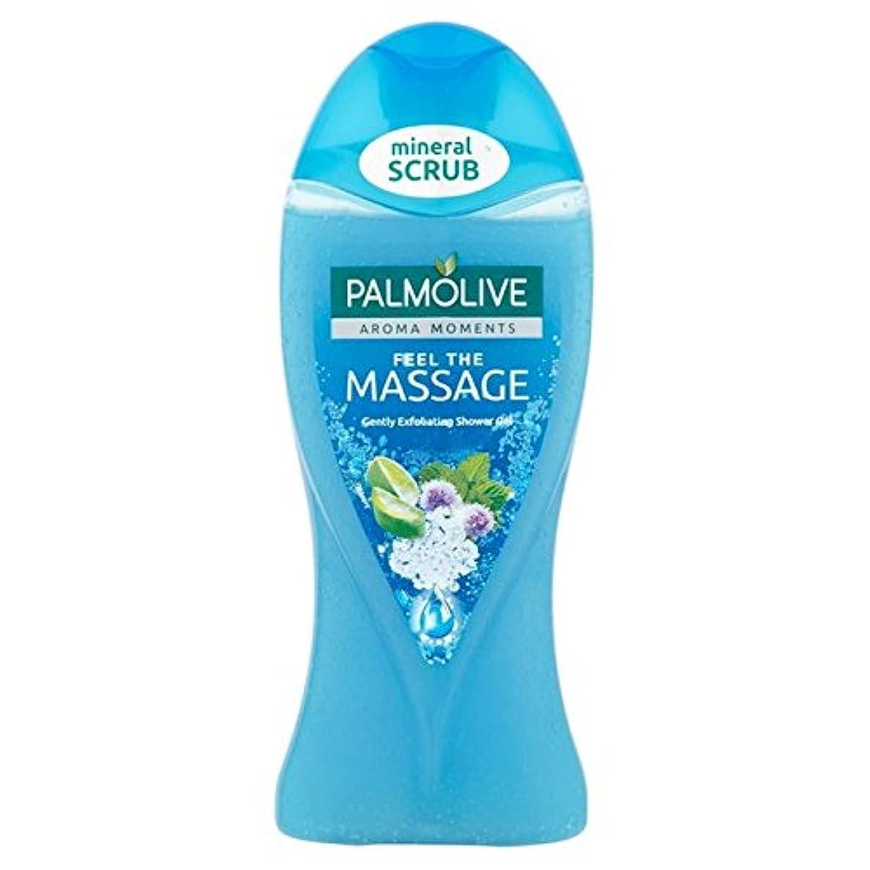 雇うくつろぐ有効なパルモシャワージェルマッサージ250ミリリットル x4 - Palmolive Shower Gel Massage 250ml (Pack of 4) [並行輸入品]