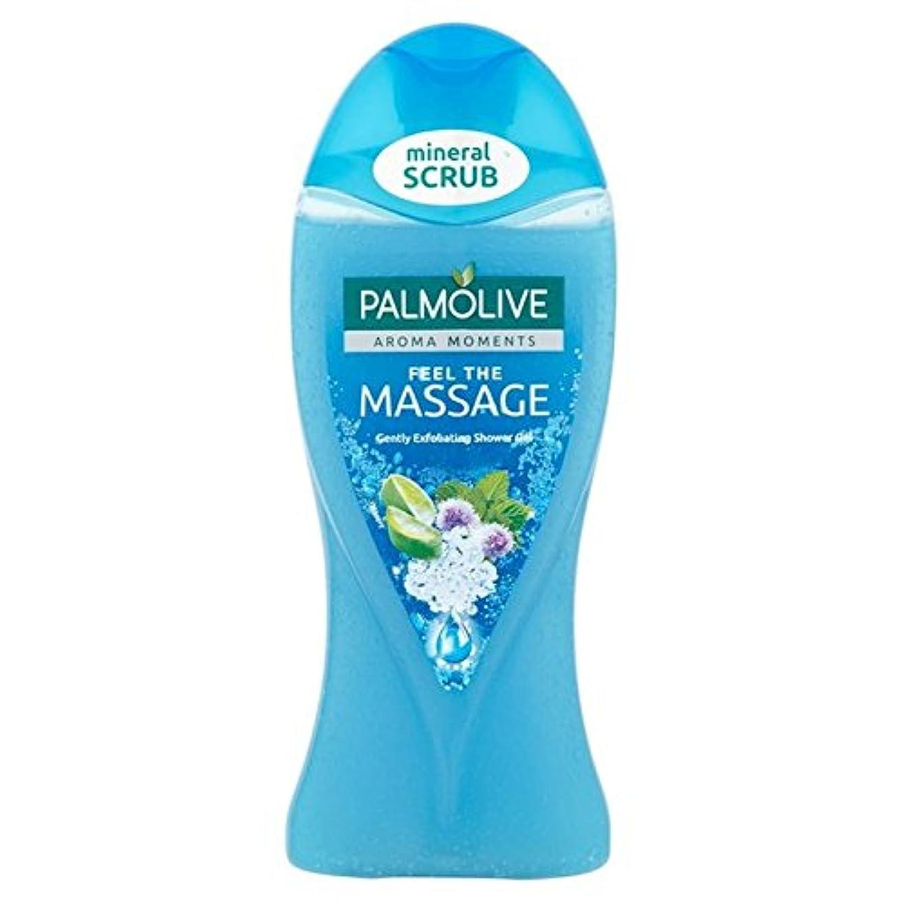 召集する忘れる深めるパルモシャワージェルマッサージ250ミリリットル x4 - Palmolive Shower Gel Massage 250ml (Pack of 4) [並行輸入品]