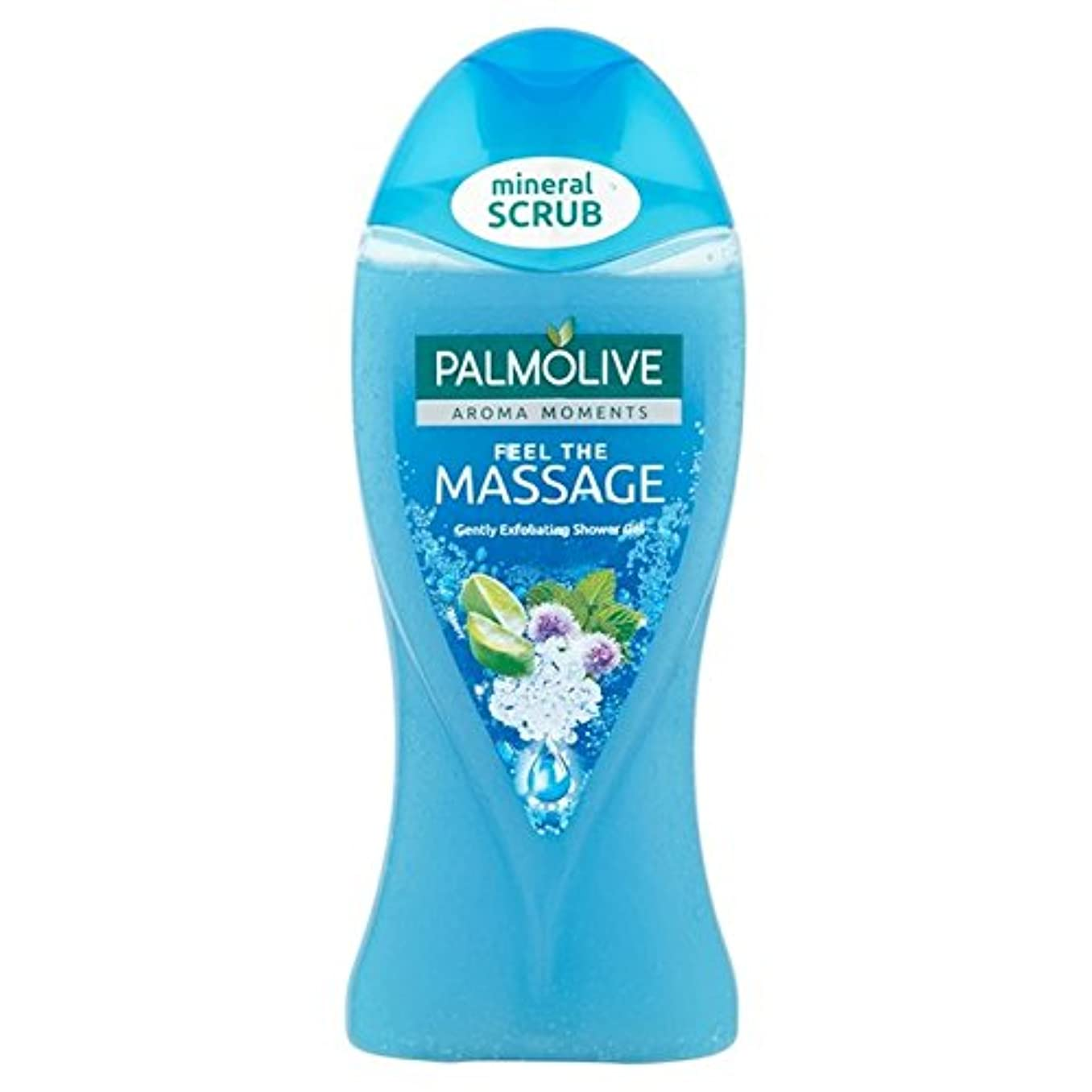 ホスト慣らす明るくするパルモシャワージェルマッサージ250ミリリットル x2 - Palmolive Shower Gel Massage 250ml (Pack of 2) [並行輸入品]