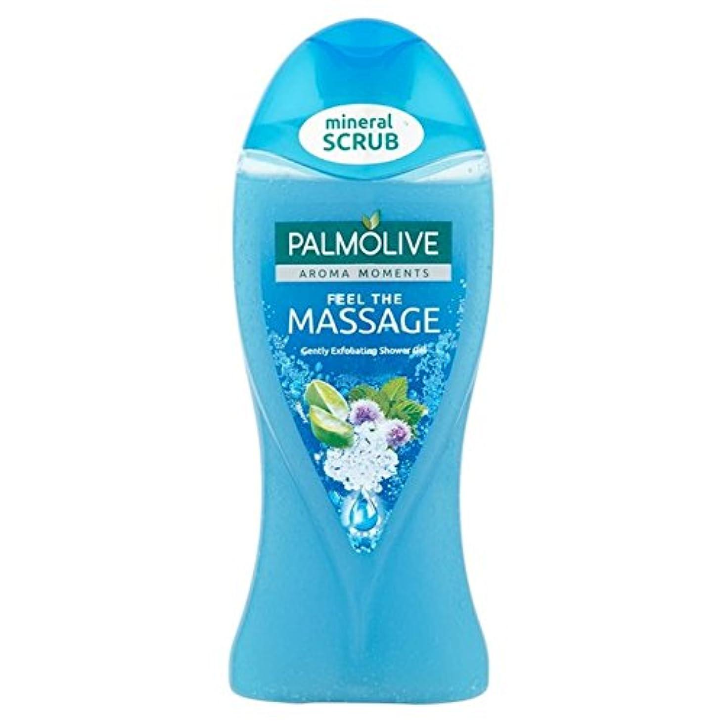 ドナー不屈無パルモシャワージェルマッサージ250ミリリットル x4 - Palmolive Shower Gel Massage 250ml (Pack of 4) [並行輸入品]