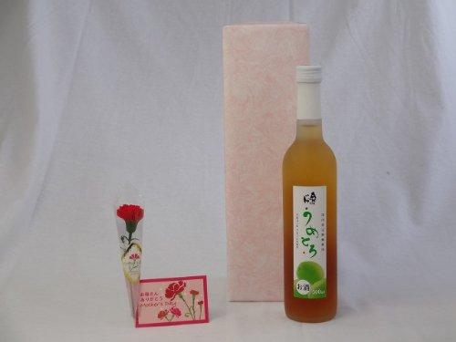 父の日 ギフトセット リキュールセット (完熟梅の味わいと日本酒のうまみをたっぷりの梅リキュール うめとろ500ml 7%奥の松酒造(福島県))父の日