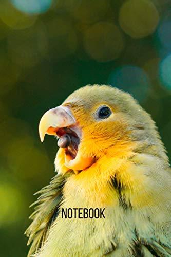Lovebird Notebook: blank lined composition journal | Lovebird notebook | 100 pages