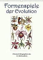 Formenspiele der Evolution. Chromolithographien des 19. Jahrhunderts (Wandkalender 2022 DIN A3 hoch): Unendliche Vielfalt, erschaffen in Jahrmillionen. (Monatskalender, 14 Seiten )