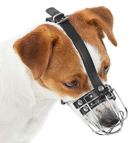 PetriStor Dog Chrome Metal Muzzles Wire Basket Adjustable Leather Straps (№0) Circumference is 6in, Length is 3.1in