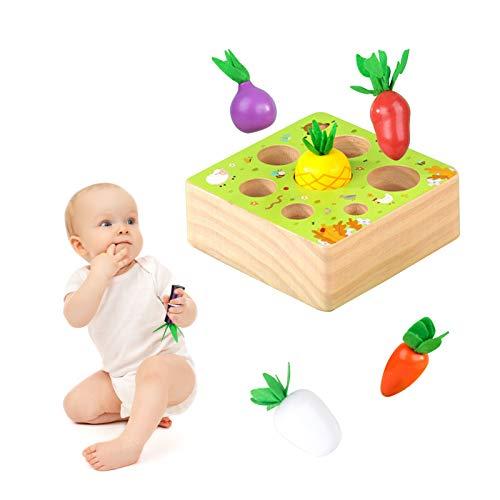Montessori Spielzeug ab 1 Jahr | Kinder Motirikspielzeug für 12 Monate Jungen und Mädchen | Baby Holzspielzeug Karotten Ernete Puzzle | Geburtztag New Jahr Weihnacht Geschenk für Kleinkind