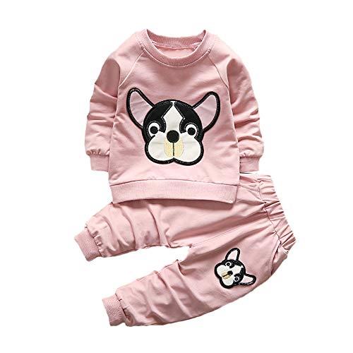 Ropa Bebe Niña Otoño Invierno, ❤️ Zolimx Recién Nacidos de Mangas Largas Chaqueta de Cremallera Ropa de Abrigo + Pantalones Ropa de Niños Conjuntos (Rosa-02, 12Meses/ 80CM)