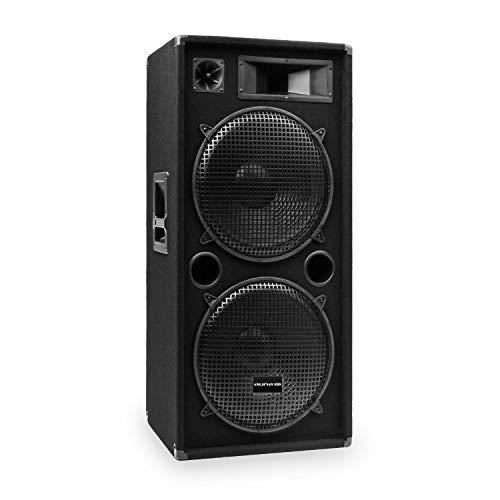 auna Pro PW – Altavoces pasivos de PA, Lote de 2 Altavoces, diseño...