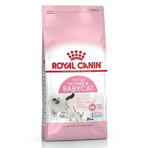 Royal Canin Mother and Babycat Gatte In Gestazione o Lattazione e Gattini da 1 a 4 Mesi di Età