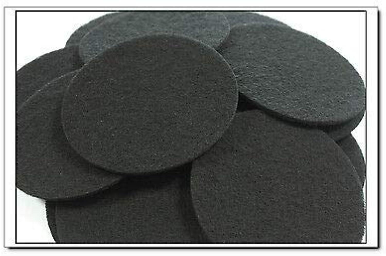 FidgetGear Activated Carbon Filter Pads Suitable For Eheim Classic 2217 600 2628170 48 PCS