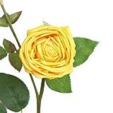 Transwen Flores Artificiales, Rosas de Seda, de plástico, para decoración de casa, jardín, Fiesta, Flores