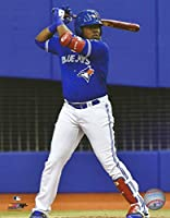 "Vladimir Guerrero, Jr. Blue Jays At-Bat 11"" x 14"" Baseball Photo"