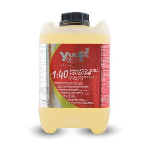 Yuup!® Professionelles Ultra entfettendes Shampoo-Konzentrat Variante (Volumen) 5 Liter Kanister