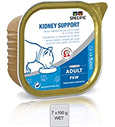 Wet food for cats with kidney problems