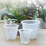 nobran Macetero de plástico transparente para orquídeas de 10/12/15 cm, con ranuras transpirables, más fáciles de controlar la humedad y el crecimiento de las raíces (12 cm)