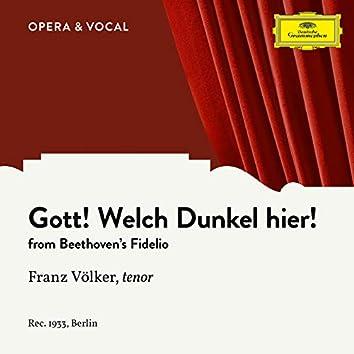 Beethoven: Fidelio, Op. 72: Gott, welch' Dunkel hier