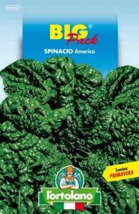 Sementi orticole di qualità l'ortolano in busta termosaldata (160 varietà) (SPINACIO AMERICA)