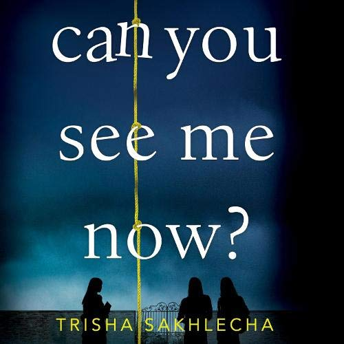 Can You See Me Now? cover art