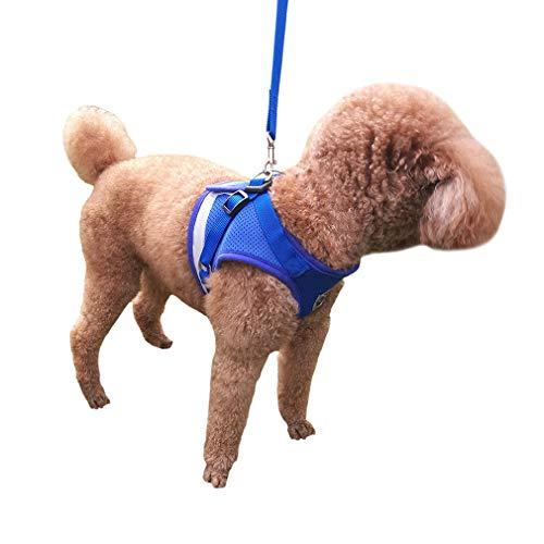 QiCheng&LYS Chaleco de Viaje Regular de Malla Transpirable con Cinturón de Seguridad para Perros y Gatos Chaleco de Seguridad para Mascotas (Azul, XL)