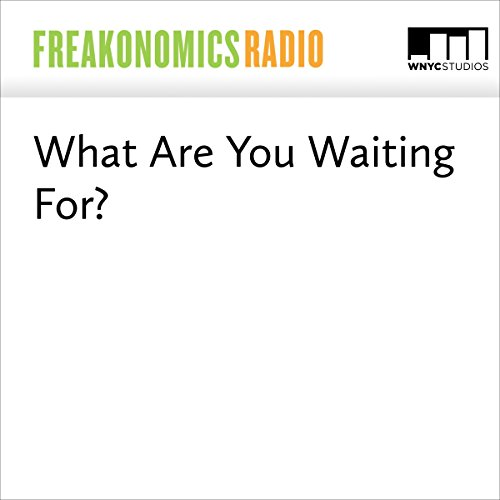 What Are You Waiting For | Stephen J. Dubner