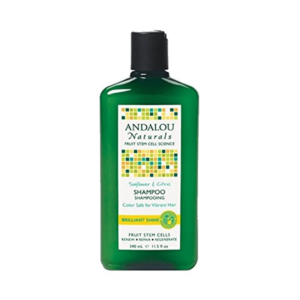 瞬時に物思いにふけるプラグAndalou Sunflower & Citrus Brilliant Shine Shampoo 340ml (Pack of 2) - アンダロウひまわり&シトラス鮮やかな輝きシャンプー340ミリリットル (x2) [並行輸入品]