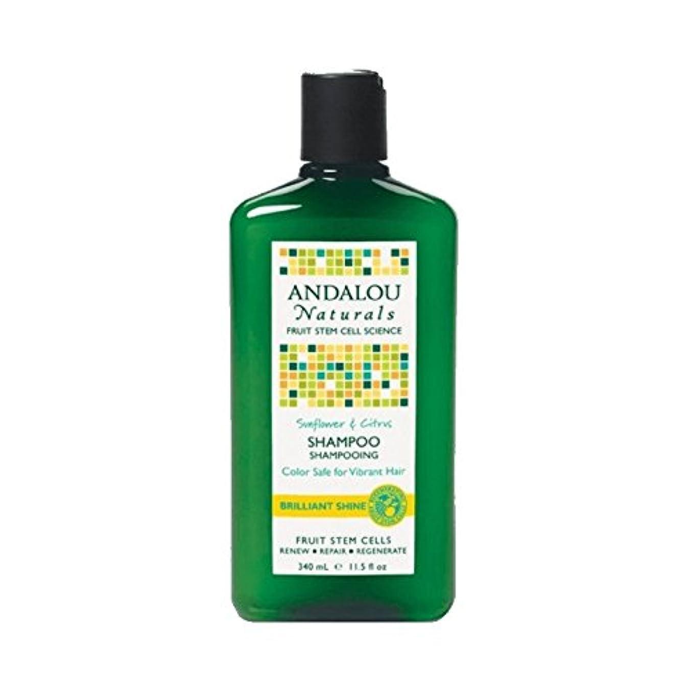 公園入り口禁止するAndalou Sunflower & Citrus Brilliant Shine Shampoo 340ml (Pack of 6) - アンダロウひまわり&シトラス鮮やかな輝きシャンプー340ミリリットル (x6) [並行輸入品]