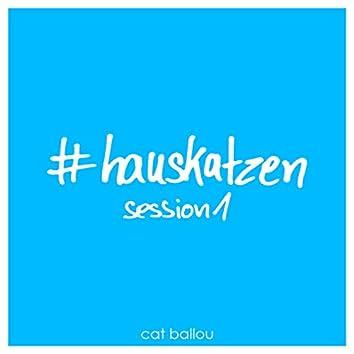 Hauskatzen Session 1 (Demo Version)