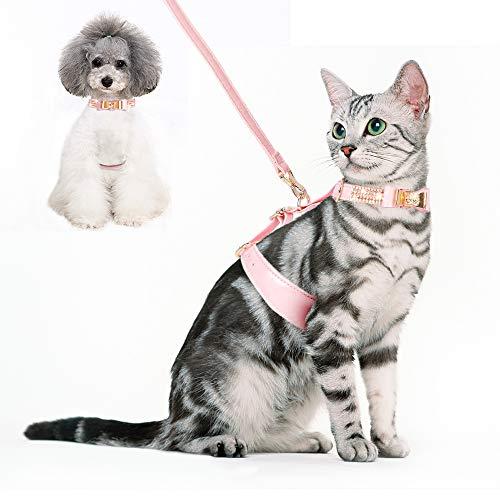 PetsHome Hundegeschirr und Leine, Katzengeschirr und Leine, Set, verstellbar, Leder, Haustiergeschirr mit Leine für Outdoor-Spaziergänge für kleine Hunde und Katzen, S, B-pink