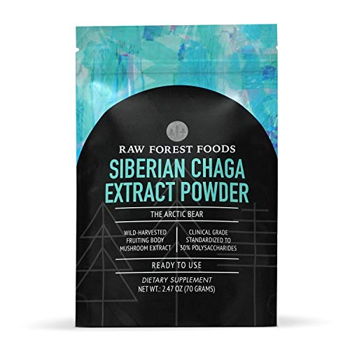 Chaga Extract Powder — Strong, Wild-Harvested, Expertly Prepared Chaga Extract — from Siberian, Single Origin Inonotus obliquus Fruiting Body — 70 Gram Bulk Pouch — Only from RAW Forest Foods