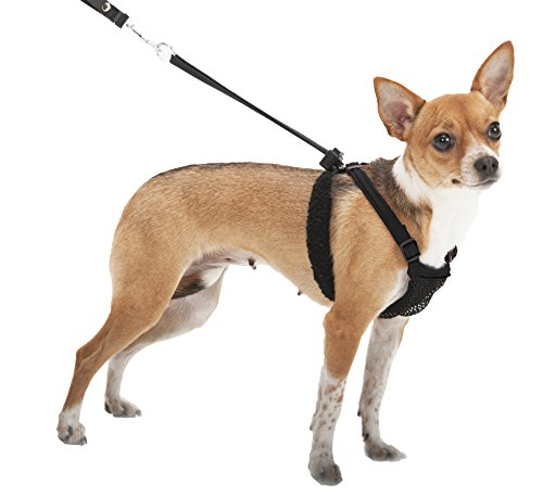 SPORN No Pull Dog Harness, Black, Small