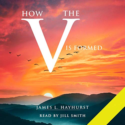 How the V Is Formed Audiobook By James L. Hayhurst cover art