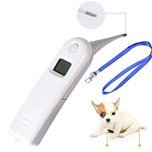 Termómetro Para Perros  marca EMGOD
