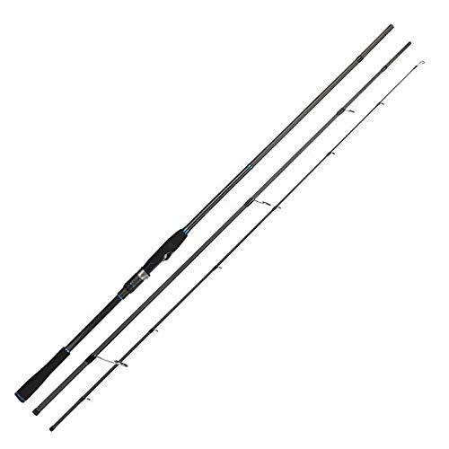 JJIAOJJ Fishing Rod Fishing Gear Fishing Rod Inshore Spinning Rod Carbon Fuji Guide Long Shot Saltwater Surfcasting Seabass Rod-DETECTIVE-S1103M (Color : DETECTIVE-S1003M)
