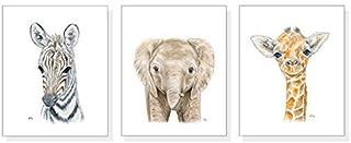 Safari Nursery Decor Unframed, Jungle Nursery Wall Art Prints Set of 3, Original Baby Animal Watercolor Portraits, Pick Your Animals & Size