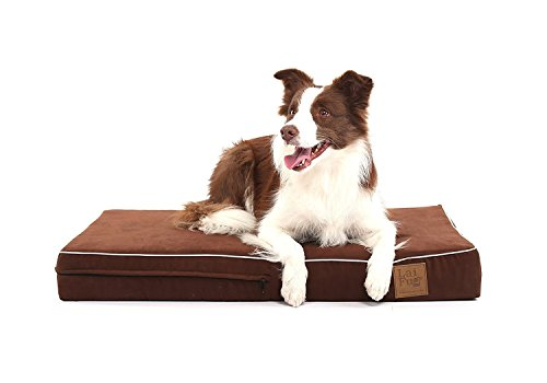 Laifug Orthopedic Memory Foam Pet/Dog Bed Replacement Cover