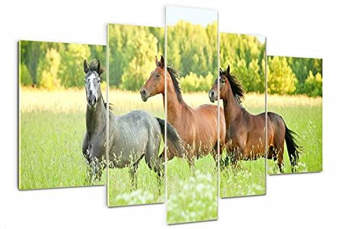 Tulup Cuadro de Cristal 170x100cm Impresión de 5 Piezas Pintura sobre Vidrio Imagen Gráfica Decoracion de Pared Moderno Vidrio Cristal - Caballos galopantes