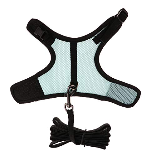 Sharplace Correa de Arnés Hurón Hámster Accesorios de Animales Pequeño Fácil de Usar Elegante - Azul S