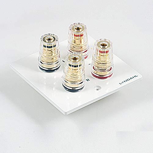 Lyndahl Highend Lautsprecherblende LKL001, LKL002, LKL005 und LKL007 für Lautsprecher, passend für Unterputzdose/Wandeinbaudose Wandanschlussblenden Surround System Weiß 2-Fach