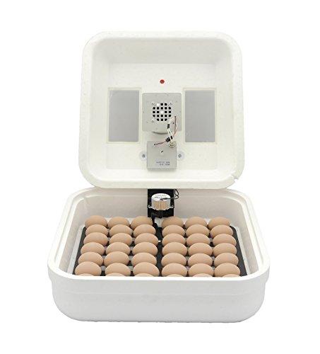 HovaBator 2370 Basic Egg Incubator Combo kit