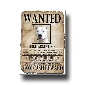 Dogo Argentino Wanted Fridge Magnet 39